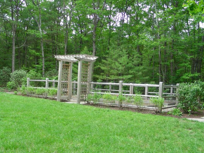 Vegetable garden deer fence ideas vegetable garden ideas for Attractive vegetable garden fence