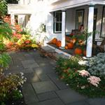 Front entry planting (fall color) - partial sun