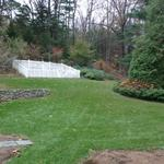 Back yard border plantings and lawn area