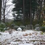 Winter snow adds new interest to landscape
