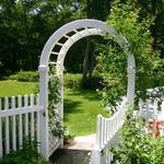 Rose Arbor with gate