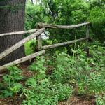 Antique rail fence